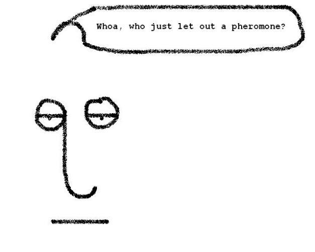 quopheromone