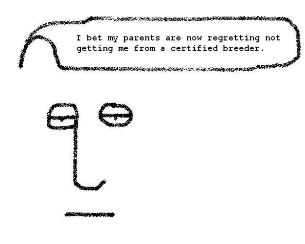 quocertifiedbreeder